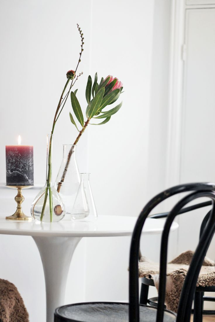 candle / australian natives / glass vases