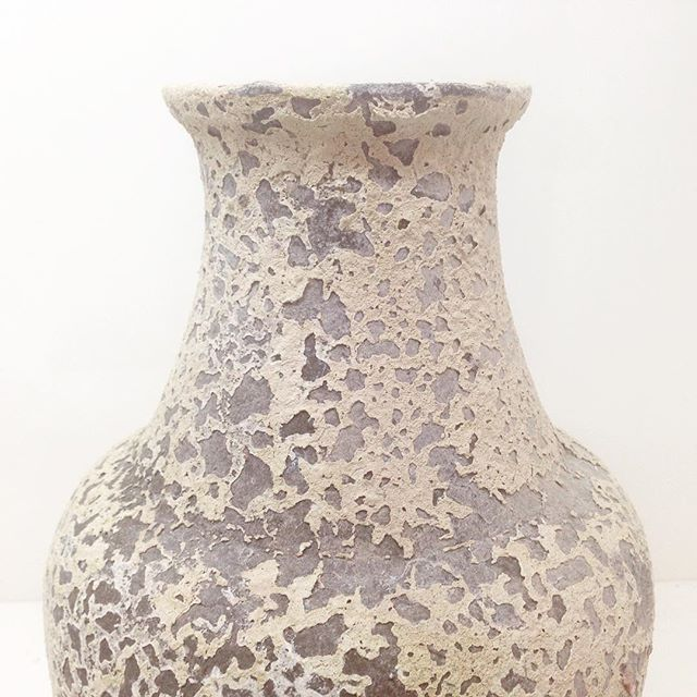 This Atlantis pot looks just like lace! @homehq #mosarteaustralia #patternsonpots #homehq
