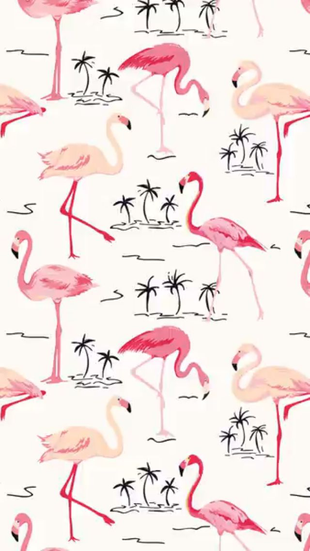 Pin De Samantha Ritchie En Wallpaper En 2019 Flamencos