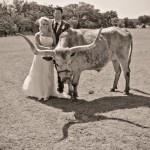 Blake Shelton & Miranda Lambert Wedding