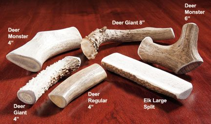 Antler Chews for Dogs; dogs prefer these to rawhides or other types of splintering bones. My dog is wild about these.
