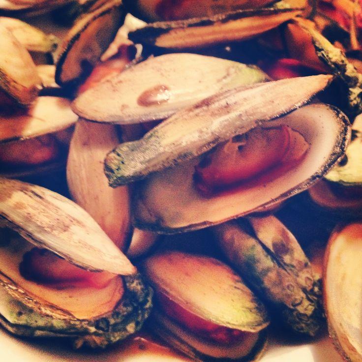 Pipi shellfish - traditional Maori food from Opotiki, New Zealand