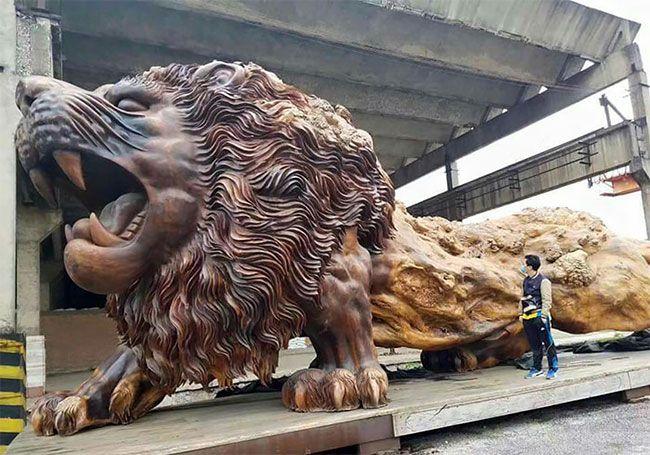 A MAIOR ESCULTURA DO MUNDO DE UM ÚNICO TRONCO DE PAU-BRASIL #arte #art #escultura #sculpture #paubrasil #lion