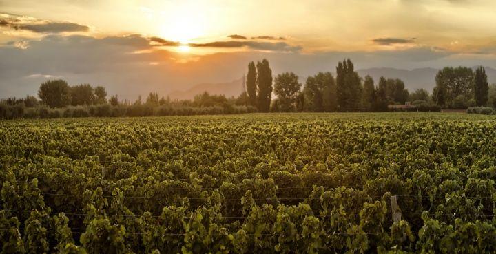 Entre Cielos   Luxury Wine Hotel & Spa in Mendoza, Argentina   OFFICIAL SITE