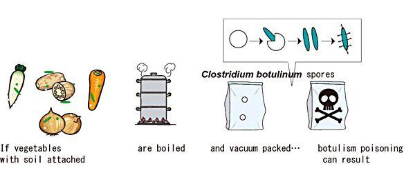 Clostridium botulinum | Laboratory of Food Microbiology | Laboratory of Food Microbiology