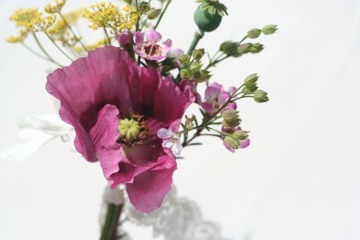 Poppy buttonhole