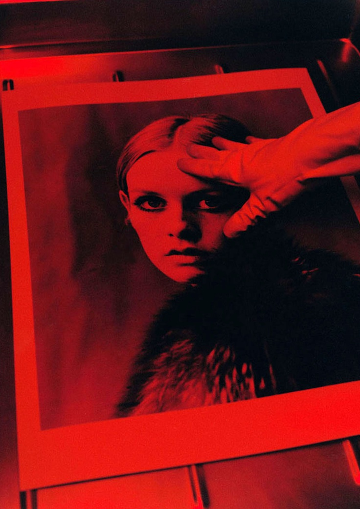 Twiggy in Lord Snowdon picture by Koto Bolofo.