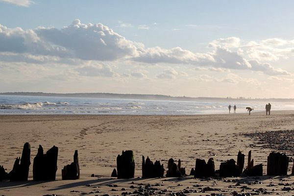 Walberswick Beach
