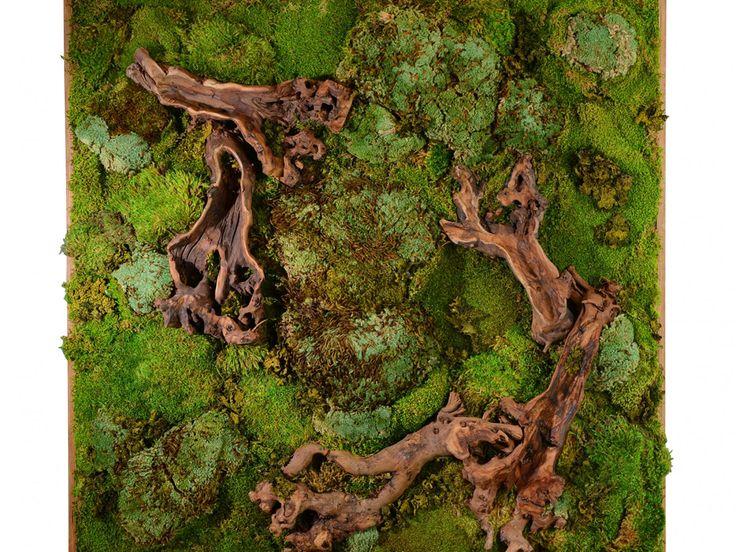 Living Wall Art best 10+ moss wall art ideas on pinterest | moss wall, moss art
