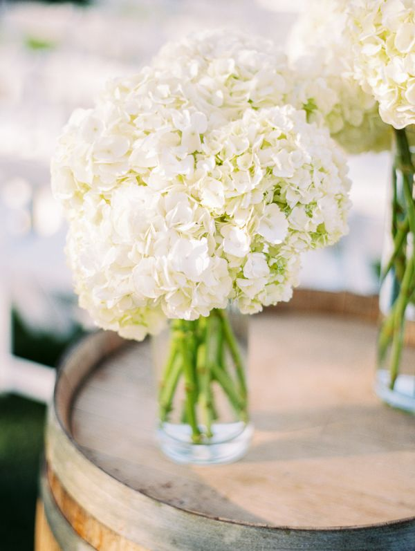 White Hydrangea Wedding Decor | photography by http://rachel-solomon.com