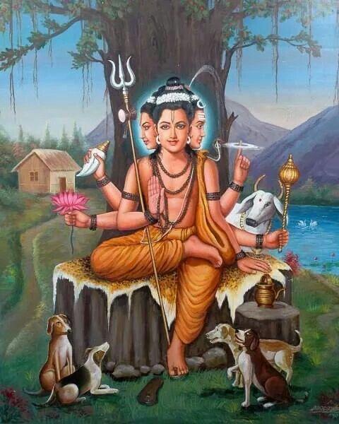 183 Best Mythological Messes Redux Images On Pinterest: 183 Best Images About Guruji On Pinterest