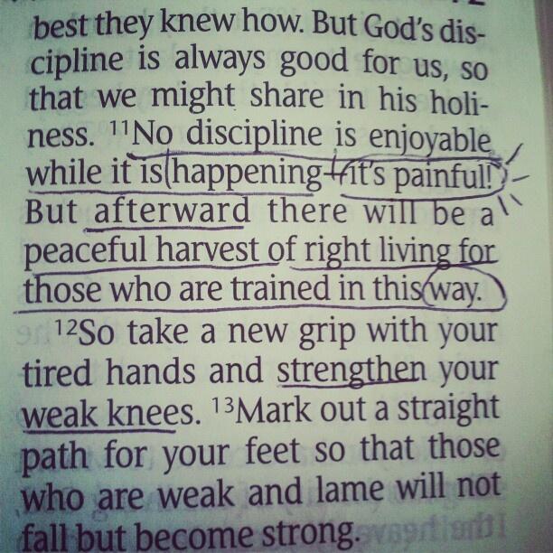 Hebrews 12:11-13