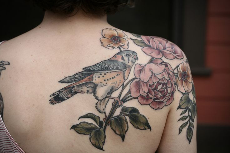 American kestrel with wild roses by Kirsten Holliday at Wonderland Tattoo; Portland, OR.