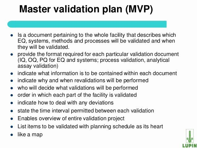 30 Validation Master Plan Template In 2020 With Images How To