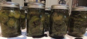 Step by Step easy Directions and recipe for Sweet Crisp Cucumber Pickles...family favorite....
