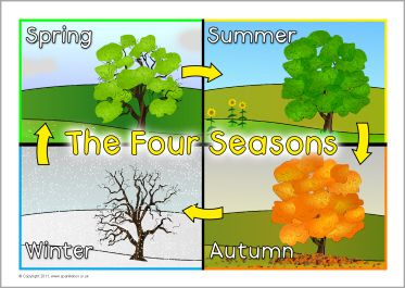 133 Best The Four Seasons Images On Pinterest Science