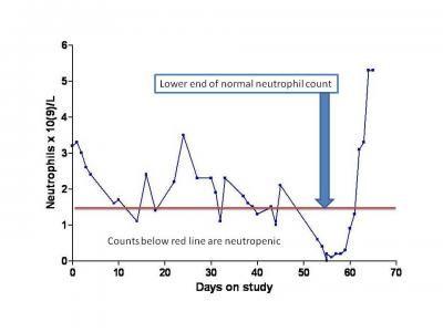 cyclic neutropenia treatment - Google Search