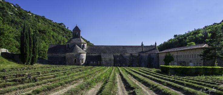 Abbaye Notre-Dame de Sénanque, Provence