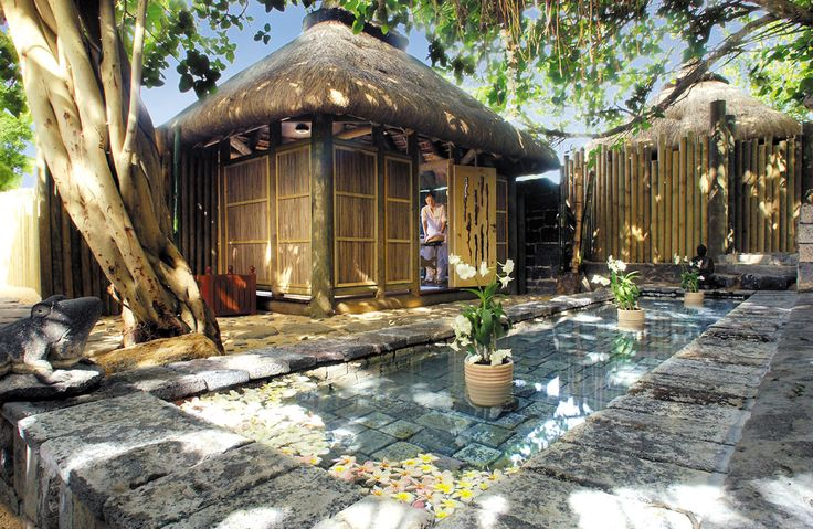 A luxurious spa experience await you at Le Banyan Wellness Centre, rustic stone steps lead to a thatch treatment cabin built in the branches of a centuries old Banyan tree. #LeCanonnier