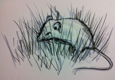 Create A Drawing A Day: A timorous beastie (timid mouse).