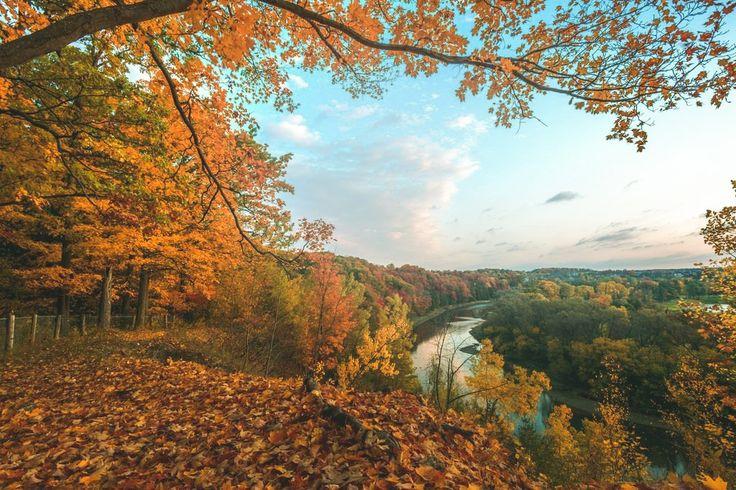 ***Homer Watson Park in autumn (Kitchener, Ontario) by Brian Krouskie E