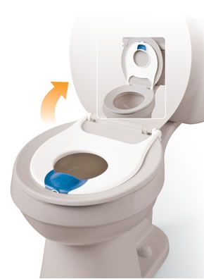 Flip+n+Flush+Toilet+Potty+Seat+(Standard+Round).  This is perfect!