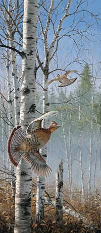 Rapid Departure- Grouse by David A. Maass