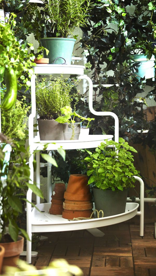 It's time to bring out that green thumb! Use the SOCKER plant stand to create an elegant presentation of flowers, plants or fresh herbs.