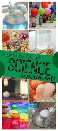 Year Round Science Experiments – make fun, seasonal science projects a part of y…