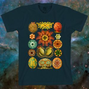 t-shirt-mock-haeckel-new at public domaine review -- for sue sie