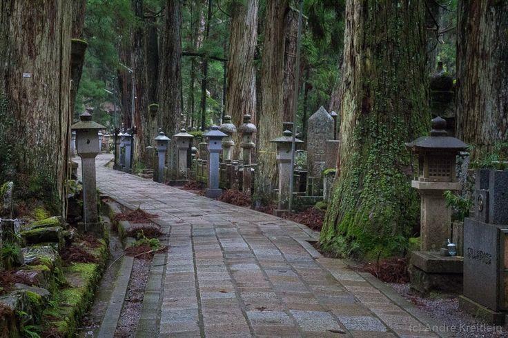 Japan (2015) – Koya-san – Waldfriedhof – Echt Pech