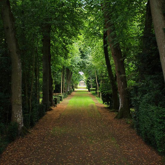 Pathway, Normandy, France #pathway #trees #treelined #normandy #france