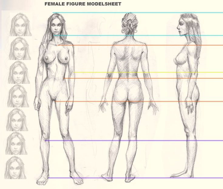 how-to-draw-woman-figure | Drawing | Pinterest | Drawings, Anatomy ...