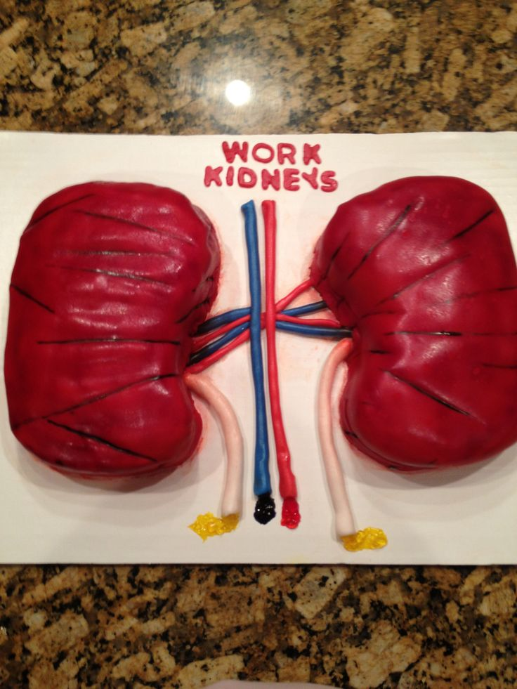 9 Best Images About Kidney Cakes On Pinterest