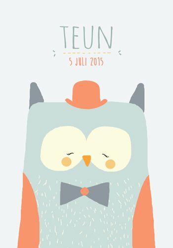 Geboortekaartje jongen - Teun - Pimpelpluis  https://www.facebook.com/pages/Pimpelpluis/188675421305550?ref=hl (# uil - hoed -  dieren - schattig - lief - origineel)
