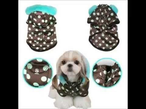 Como hacer ropa para perro, moda canina. - YouTube