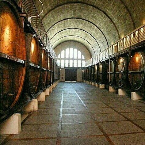 Wine barrels Cape Town