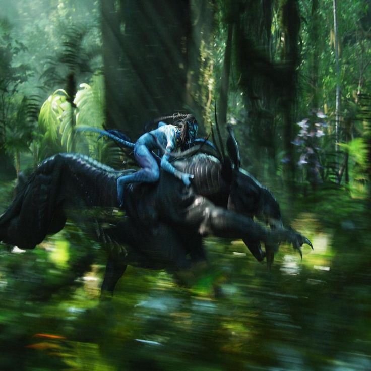 Avatar Movie World: 17 Best Images About James Cameron's Avatar On Pinterest