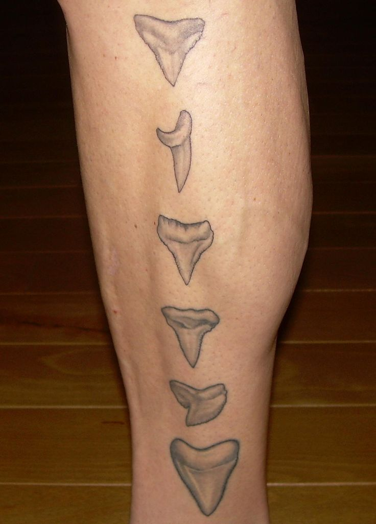 Images For > Great White Shark Tooth Tattoo