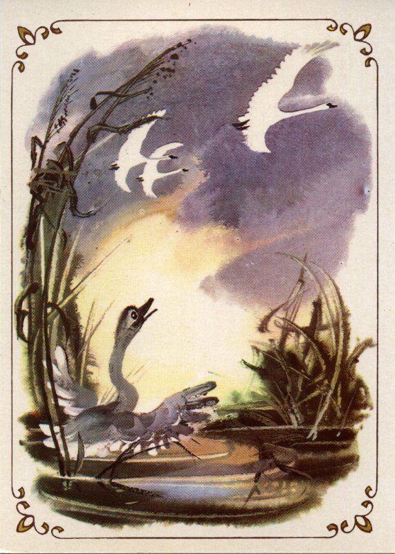 Раз под вечер, когда солнышко еще сияло на небе, из-за леса поднялась целая стая чудных больших птиц. Таких красивых птиц утенок никогда еще не видал – все они были белые, как снег, с длинными, гибкими шеями. Это были лебеди.