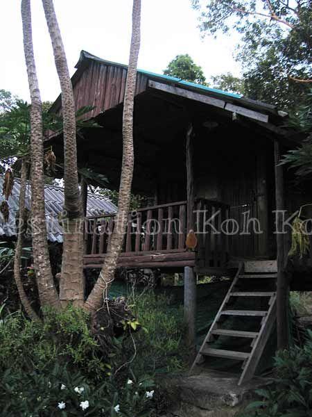 Fan Hut @ Jimmy Hut (Koh Kood, Thailand)