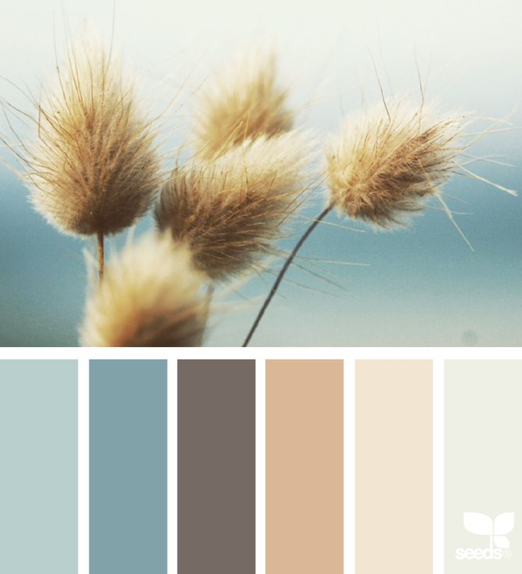 Nature Hues - http://www.design-seeds.com/nature-made/nature-hues-2