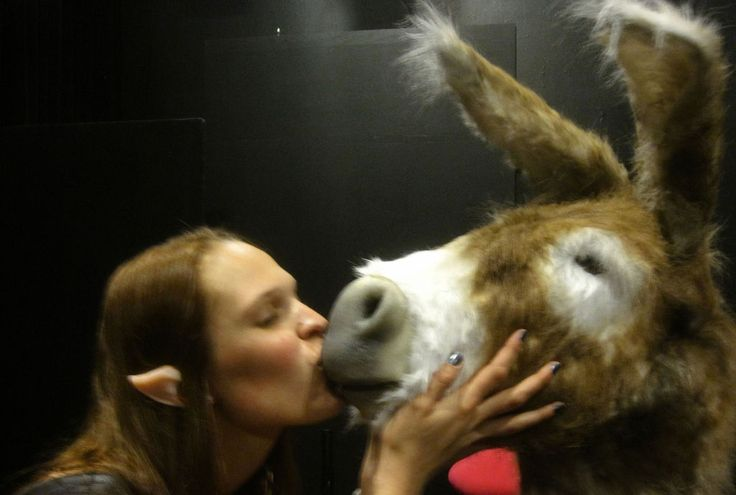 The 25 best ideas about donkey mask on pinterest horse for Donkey face mask template