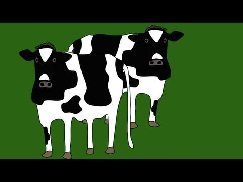 On the Farm (counting song) YouTube- Kindergarten (counts up and back); Shows number and quantity