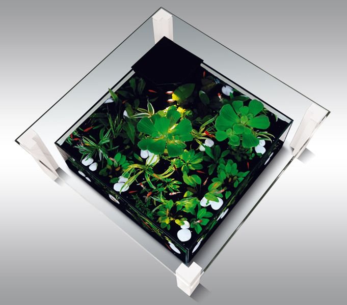 Table basse aquarium carr e aquariums aquaniman id e - Agencement cellier buanderie ...