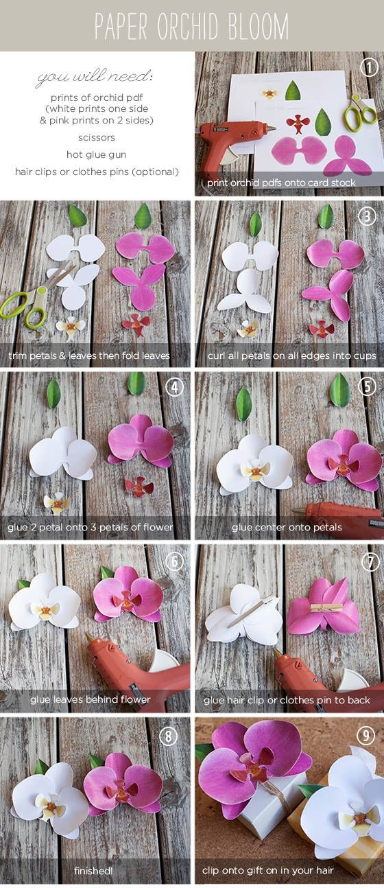 paper orchid tutorial: expand picture larger and hang on wall!