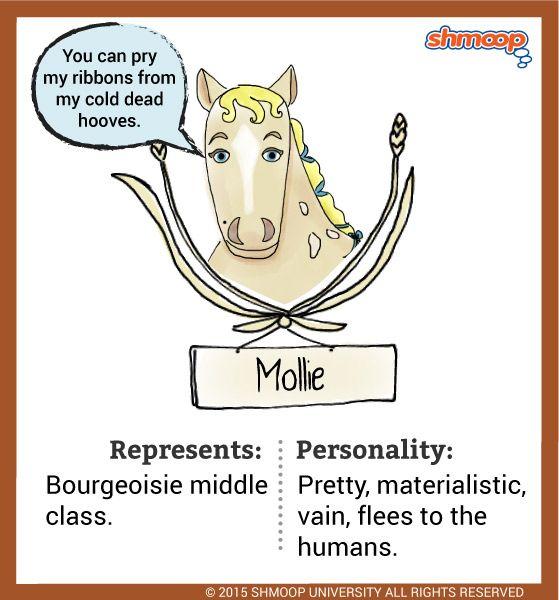 Animal farm character analysis essay