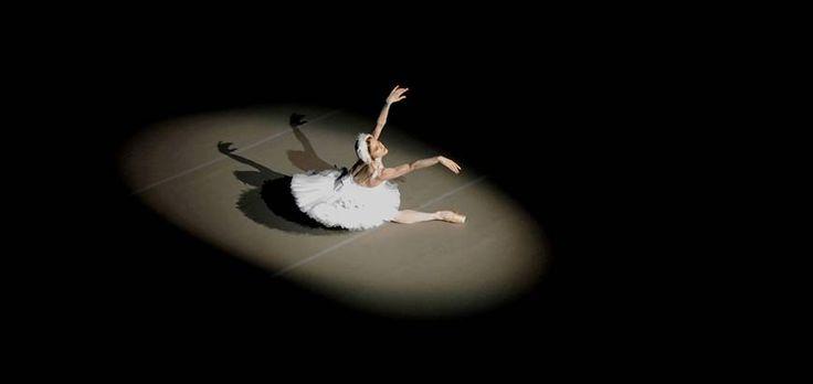 Marianela Nunez dances The Dying Swan