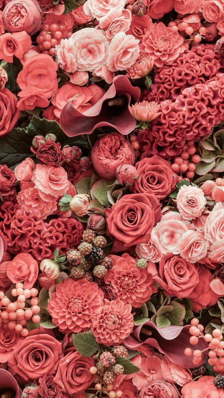 All The Pink Flower Power Pinterest Flower Wallpaper Flower