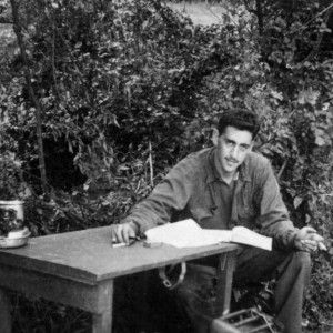 critical essay j.d. salinger Catcher in the rye thesis statements and important quotes below you will find five outstanding thesis statements for catcher in the rye by jd salinger that can be used as essay starters or paper topics.